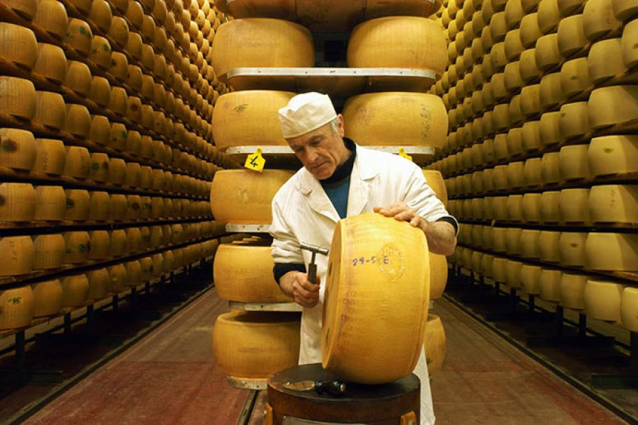 PARMESAN CHEESE: HOW THE KING OF CHEESE IS MADE